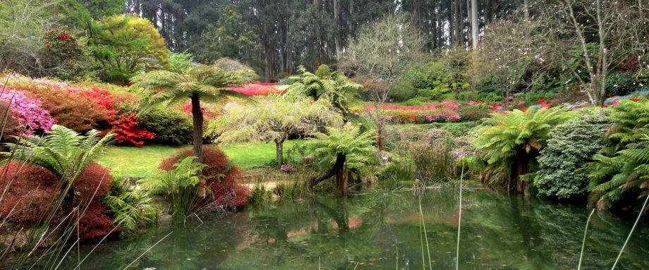 national-rhododendron-garden